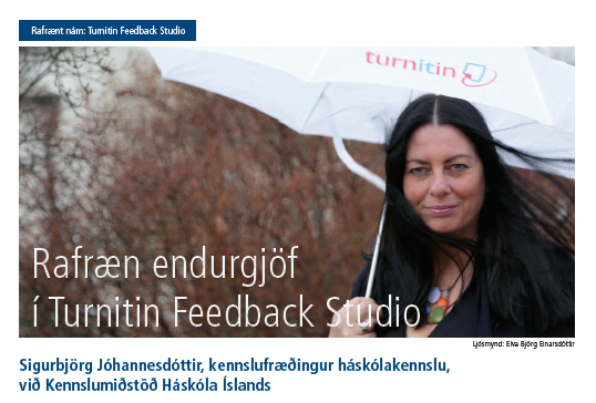 """Skjámynd af fyrsta hluta greinarinnar """"Rafræn endurgjöf með Turnitin Feedback Studio"""""""